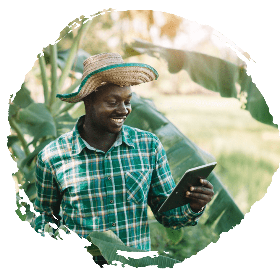 A man standing in front of a banana tree looking at a tablet he is holding in his hand and smiling.
